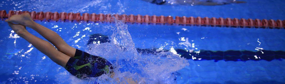 Plaukimo pamokos suaugusiems